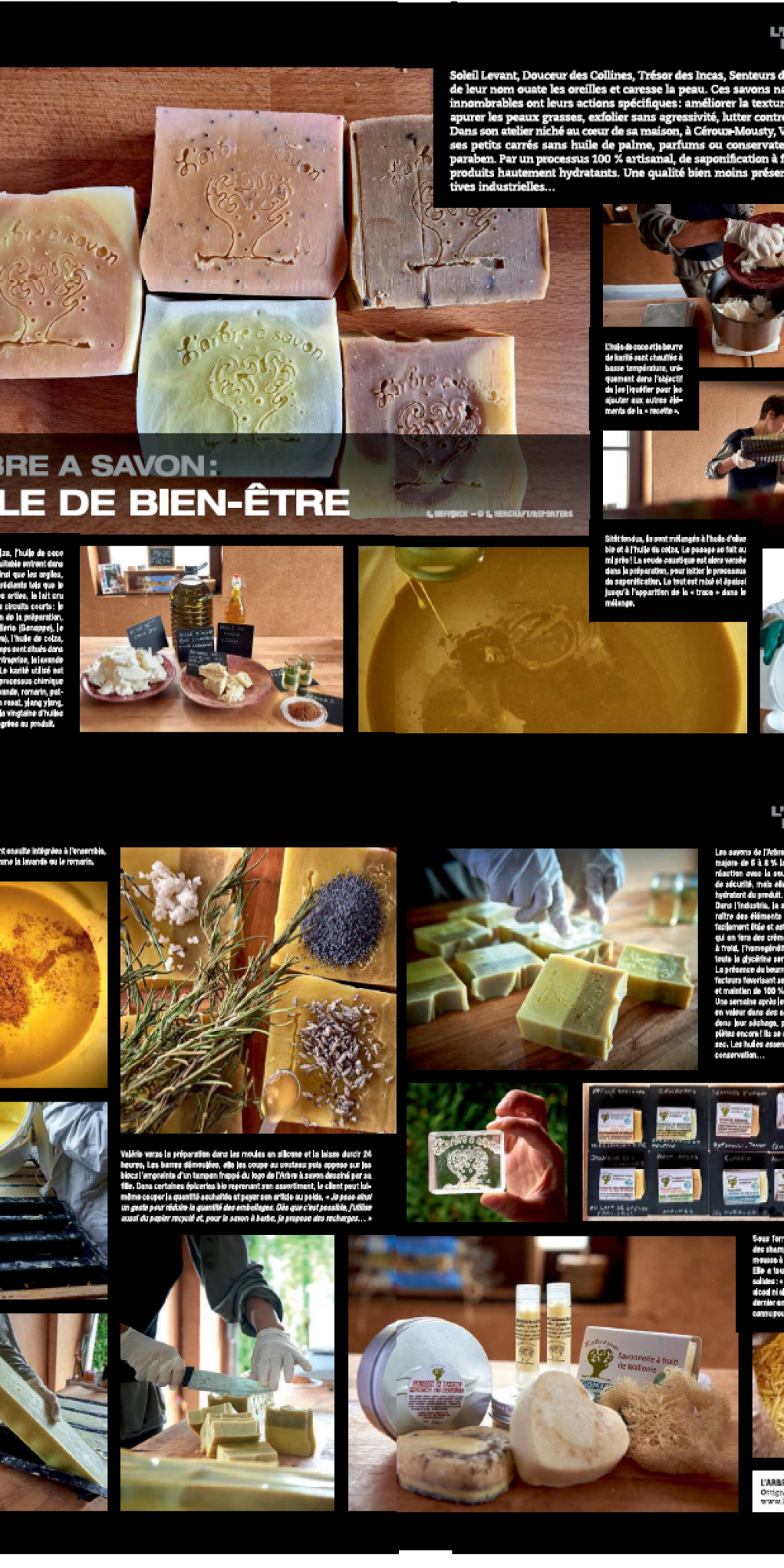 cci magazine